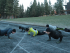 MS 180 students begin class with calisthenics and dynamic stretches on the COCC track on Nov. 23.