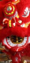 Lunar New Year #1